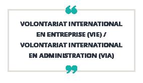 Volontariat International en Entreprise (VIE) /  Volontariat International en Administration (VIA)